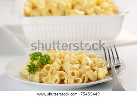 Macaroni and cheese in the casserole and plate - stock photo