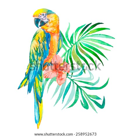 Macaw isolated on white background. Palm leaves and tropical flower. Tropical parrot. Exotic. - stock photo