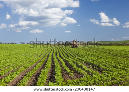 Machine working at peanut field under a blue sky. Agriculture. - stock photo
