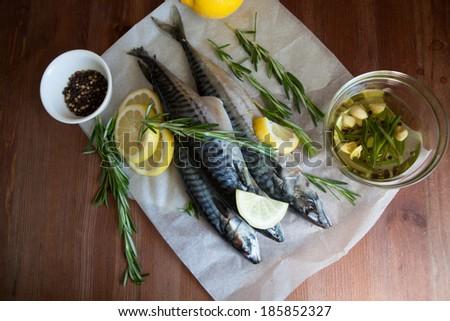 Mackerel Fish (Scomber scrombrus) with lemon and rosemary - stock photo