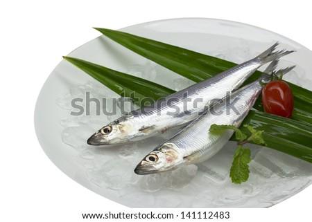 Mackerel Fishes - stock photo