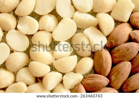 Macro Almonds and Macadamia Nuts 7 - stock photo