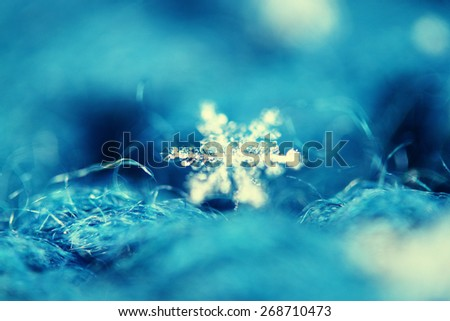 macro background snowflake on wool - stock photo