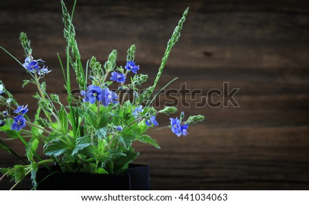 Macro beautiful and delicate bouquet of violets against the background of the old board - stock photo