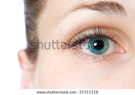 macro beautiful female eye - stock photo
