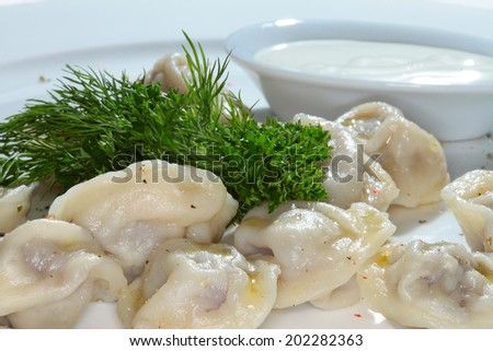 macro boiled dumplings with butter with greenery on white plate - stock photo