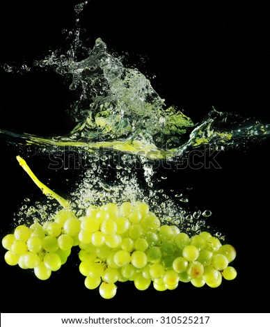 macro bright juicy grapes in water on a black background Studio - stock photo