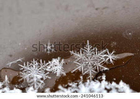 Macro close up from a snowflake - stock photo