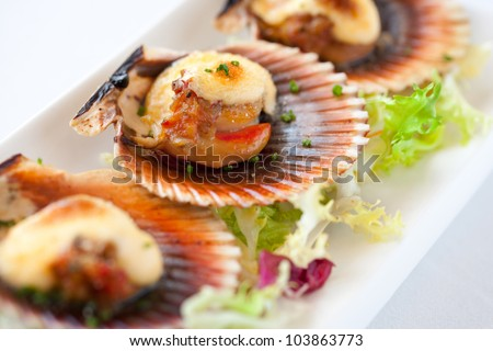 Macro close up of queen scallop starter. - stock photo