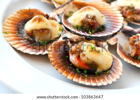 Macro close up of queen scallop starter with garlic dressing. - stock photo
