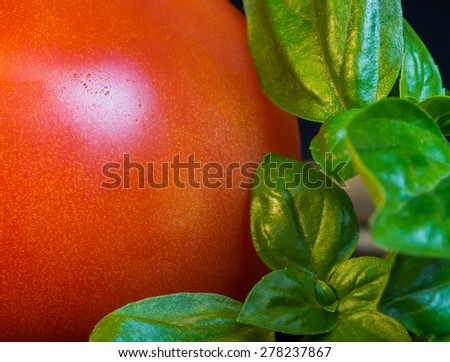 Macro close up of ripe red tomato next to fresh green basil leaves.   Fingerprint can be seen on the tomato. - stock photo