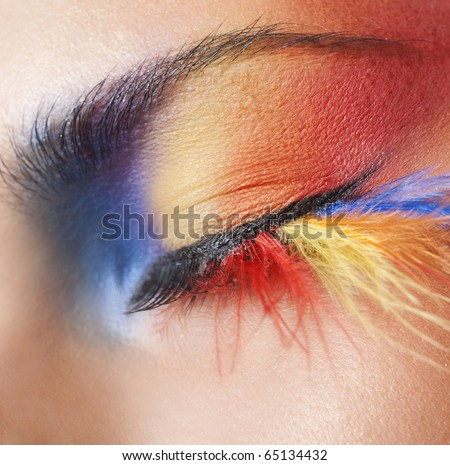 Macro eye of a woman with bright colourful eyeshadow with long feather false eyelashes - stock photo