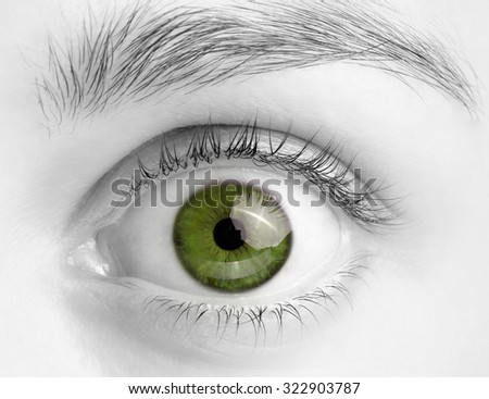Macro image of wide open green eye, black and white photo - stock photo
