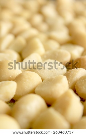 Macro Macadamia Nuts 3 - stock photo