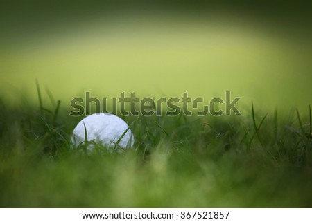 Macro of a golf ball in natural grass of golf course - stock photo