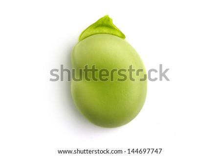 macro of a single green broad bean - stock photo