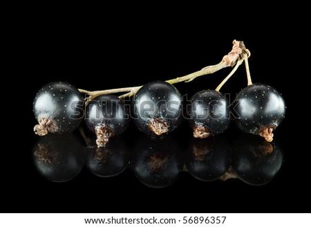 Macro of black currant on black reflective background - stock photo