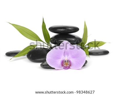 Macro of orchid and bamboo leaf with stacked stones - stock photo