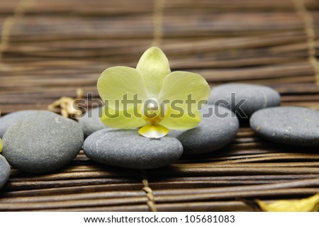 Macro of orchid with flower dried petals and pebbles on mat - stock photo