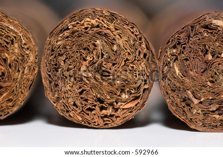 Macro of the ends of three fine cigars - stock photo