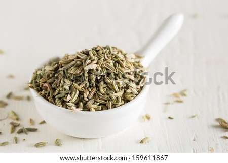 Macro shot of fennel seeds in small white bowl - stock photo