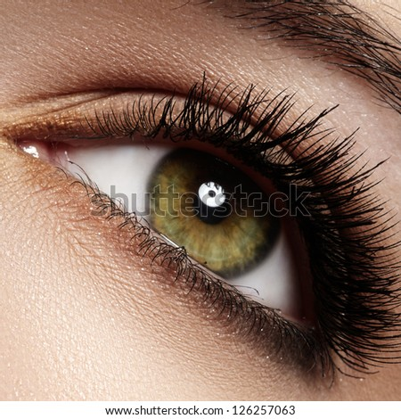 Macro shot of woman's beautiful green eye with extremely long eyelashes. Sexy view, sensual look - stock photo