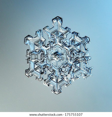 macro snowflake ice crystals present natural - stock photo
