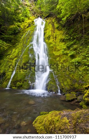 Madison  Falls at Olympic National Park - stock photo