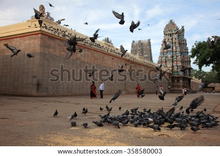 MADURAI, INDIA - NOV 25 :Hindu devotees visit the Meenakshi temple when a flock of doves fly around on November 25, 2012 in Madurai,India.Meenakshi temple is the popular pilgrimage centre in India. - stock photo
