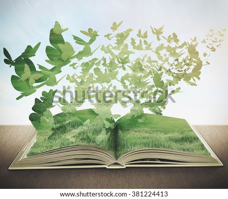 magic book, grass, butterflys - stock photo