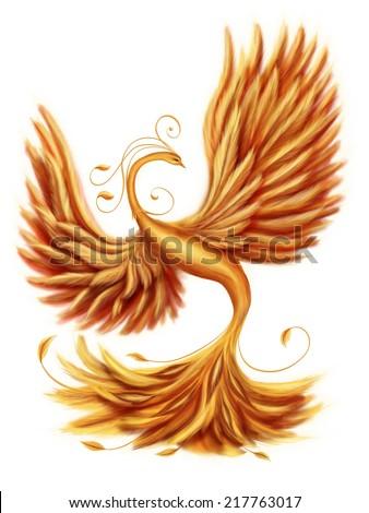 Magic firebird on a white background - stock photo