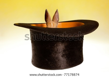 Magic hat hiding a funny rabbit that is too small - stock photo