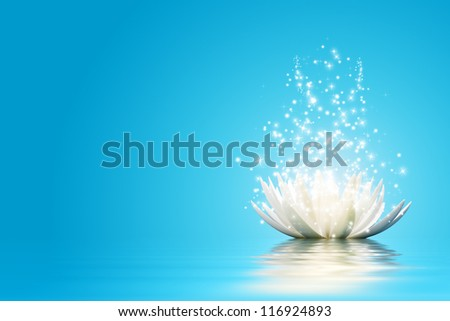 Magic Lotus flower - stock photo