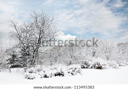 Magic view of Winter Park in luminous faded colors - stock photo