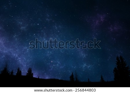 Magical landscape at night - sky filled with stars and trees silhouette - stock photo