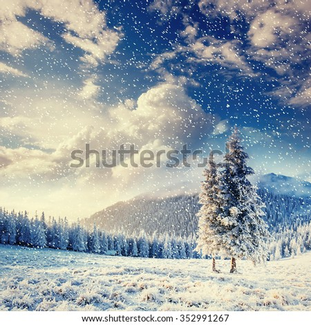 magical winter landscape, background with some soft highlights and snow flakes - stock photo