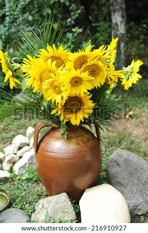 Magnificent bouquet of vivid sunflowers in antique clay pot outdoors near a rock on green grass. Clay flowerpot with bright yellow fresh sunflowers in garden. Garden arrangement with rocks and flowers - stock photo