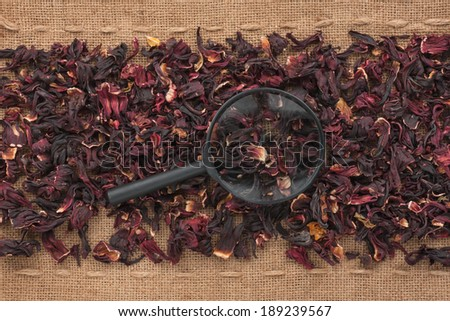 Magnifying glass lies on hibiscus  and sacking, as background - stock photo
