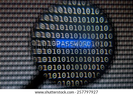 Magnifying User Password Text on Computer Screen - stock photo