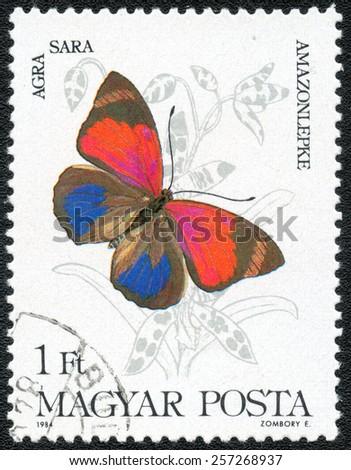 MAGYAR - CIRCA 1984: a stamp printed in the MAGYAR, Agra sara, series Butterflies author Zombory E MAGYAR, circa 1984 - stock photo