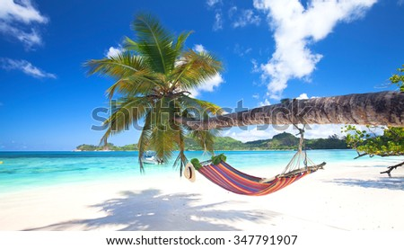 mahe Island, seychelles - Romantic cozy hammock in the shadow of the palm on the tropical beach by the sea - stock photo