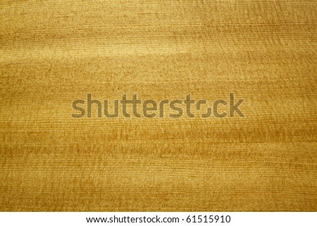 mahogany wood texture close up - stock photo