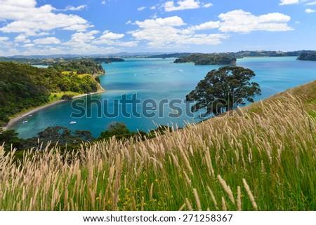 Mahurangi West Beach on the West Coast of the North Island, Auckland, New Zealand - stock photo