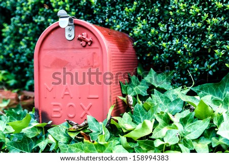 Mail box or post box with the green tree - stock photo