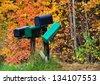 Mailboxes against autumn foliage trees - stock photo