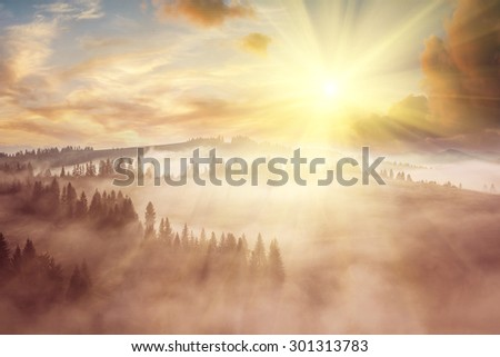 Majestic landscape with forest on hills and amazing sky - stock photo