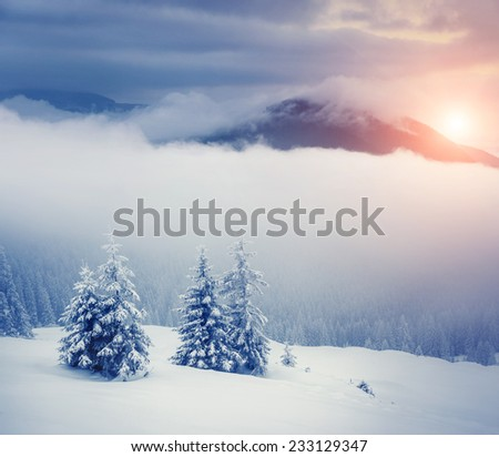 Majestic winter landscape glowing by sunlight. Dramatic wintry scene. Carpathian, Ukraine, Europe. Beauty world. Retro filter. Instagram toning effect. Happy New Year! - stock photo
