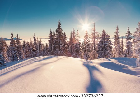 Majestic winter landscape glowing by sunlight in the morning. Dramatic wintry scene. Carpathian, Ukraine, Europe. Beauty world. Retro and vintage style, soft filter. Instagram toning effect. - stock photo