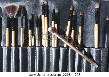 Make-up brushes in a leather bag - stock photo