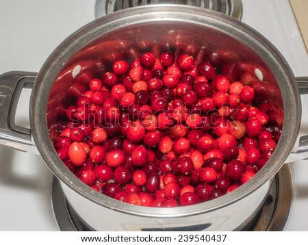 Making cranberry sauce at home before Thanksgiving. - stock photo